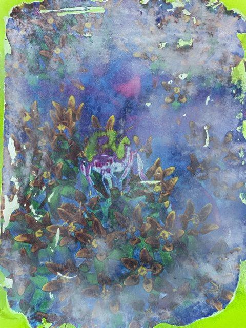 Bee in Butterfly Bush